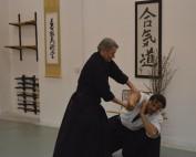 annual aikido and katori seminar