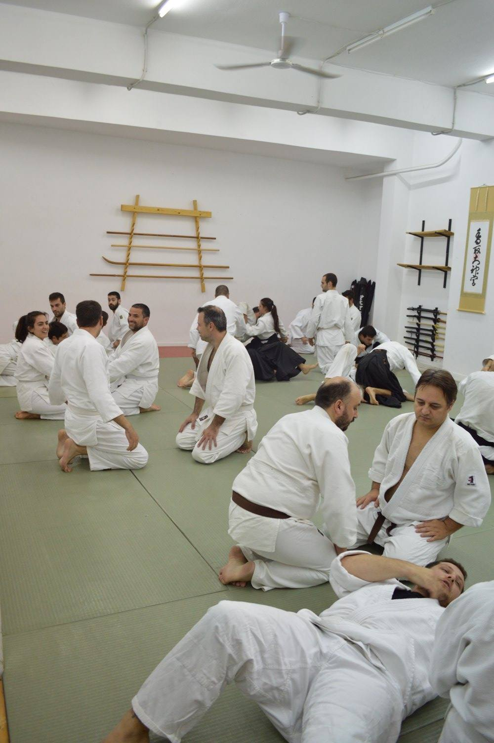 abc common aikido practice107