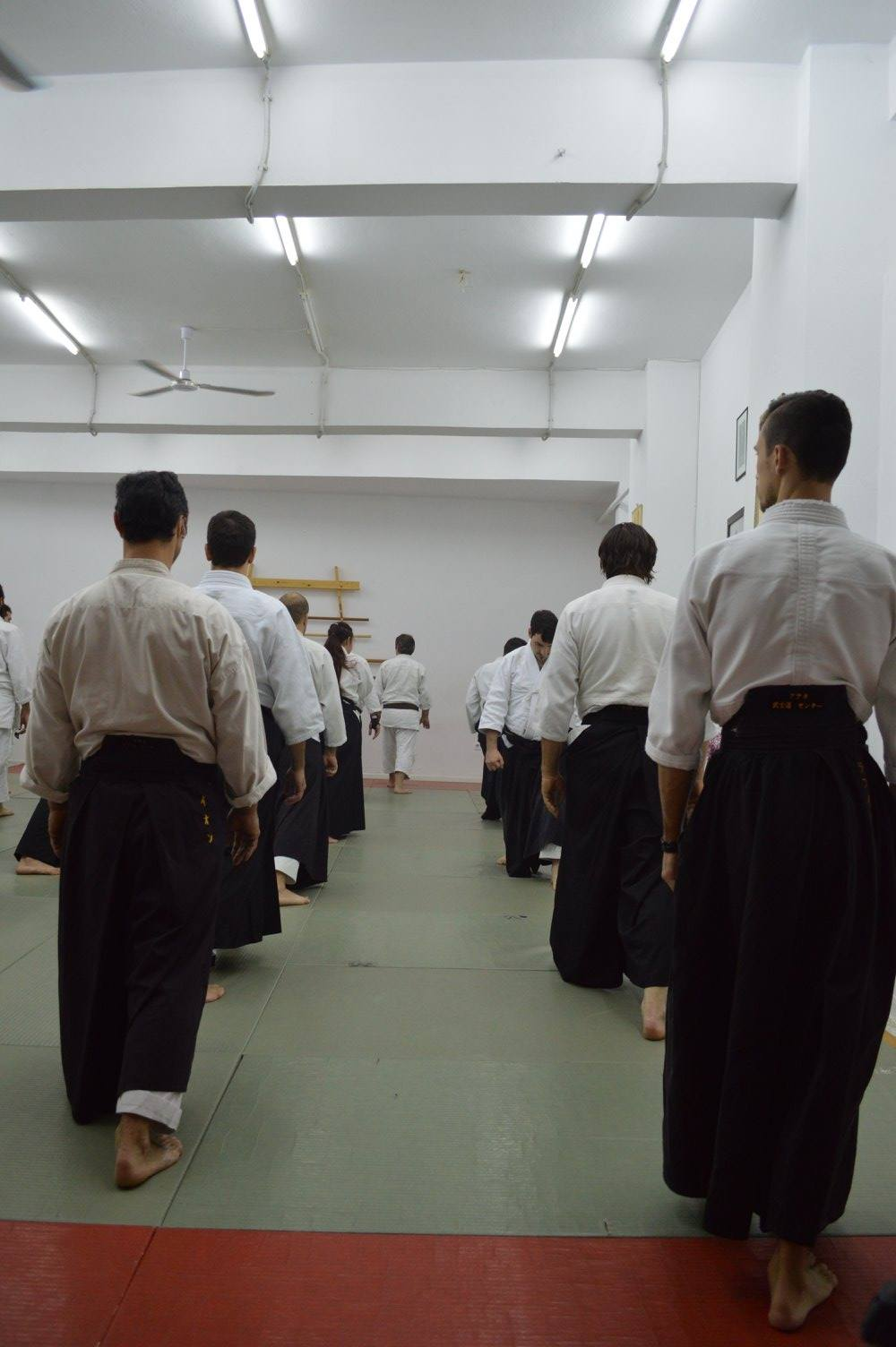 abc common aikido practice12