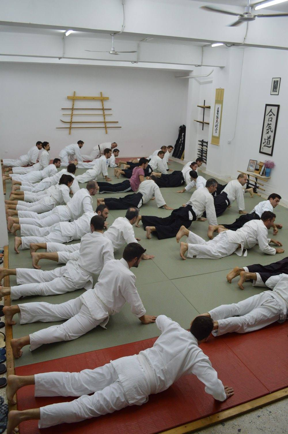 abc common aikido practice15