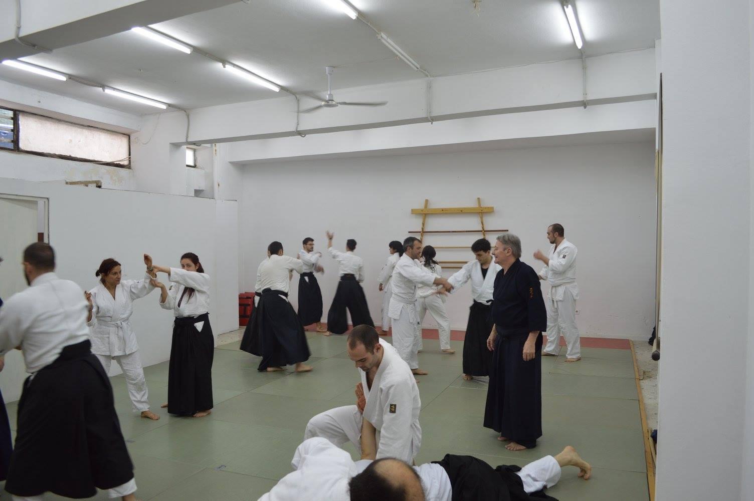 Eric Louw sensei aikido seminar