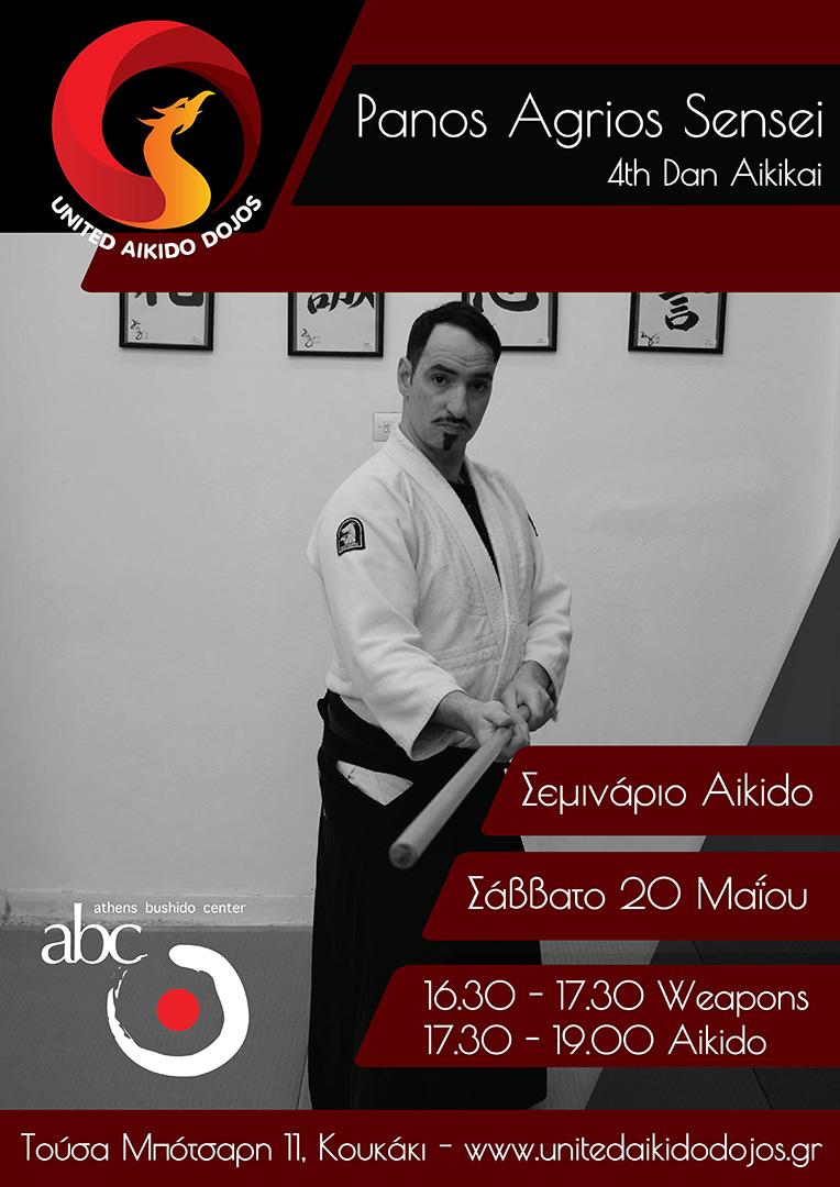 σεμινάριο aikido Μάιος 2017