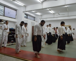 abc common aikido practice13