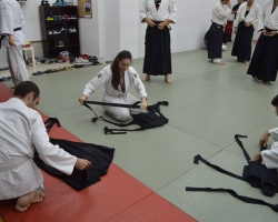 abc common aikido practice120