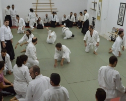 abc common aikido practice19