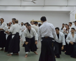 abc common aikido practice116