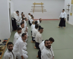 abc common aikido practice8