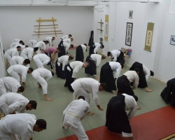 abc common aikido practice11